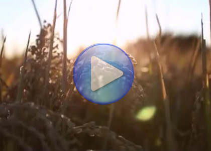 创艺享案例:沃得农机企业微电影
