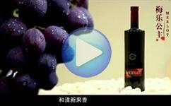 创艺享案例:葡萄酒广告片